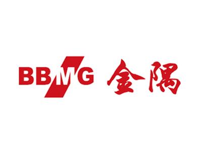 bbmg2009